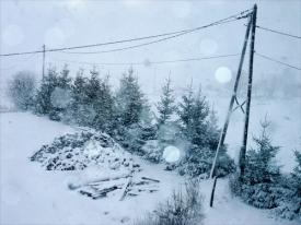 [Snow on the Camino]
