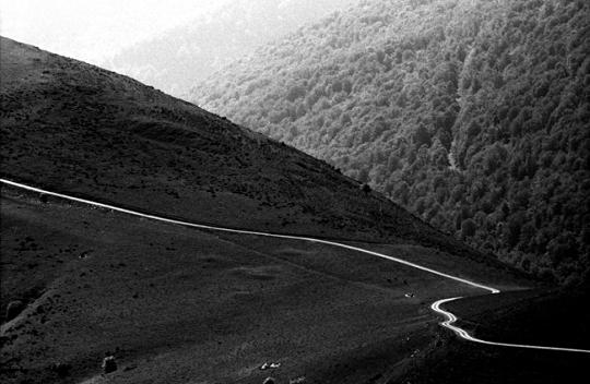 [Camino cover image]