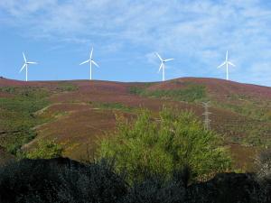 [Wind turbines]